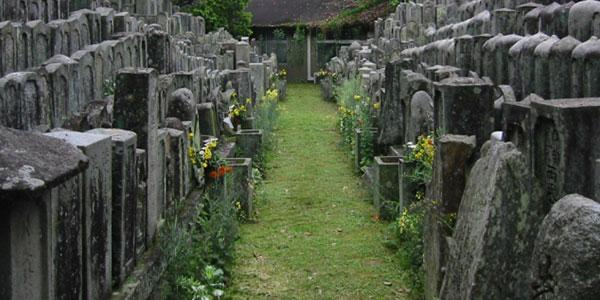 【無縁墓とは】増加する理由や新しい供養のかたちをご紹介